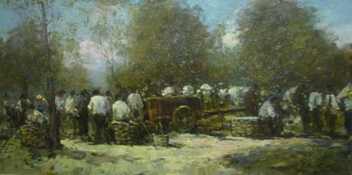 Mercato di Vicchio - cm 50x100